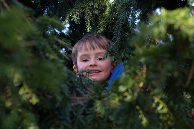 Würden Sie Ihr Kind in einen Waldkindergarten schicken?