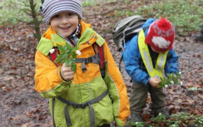 Warum Waldkindergarten?